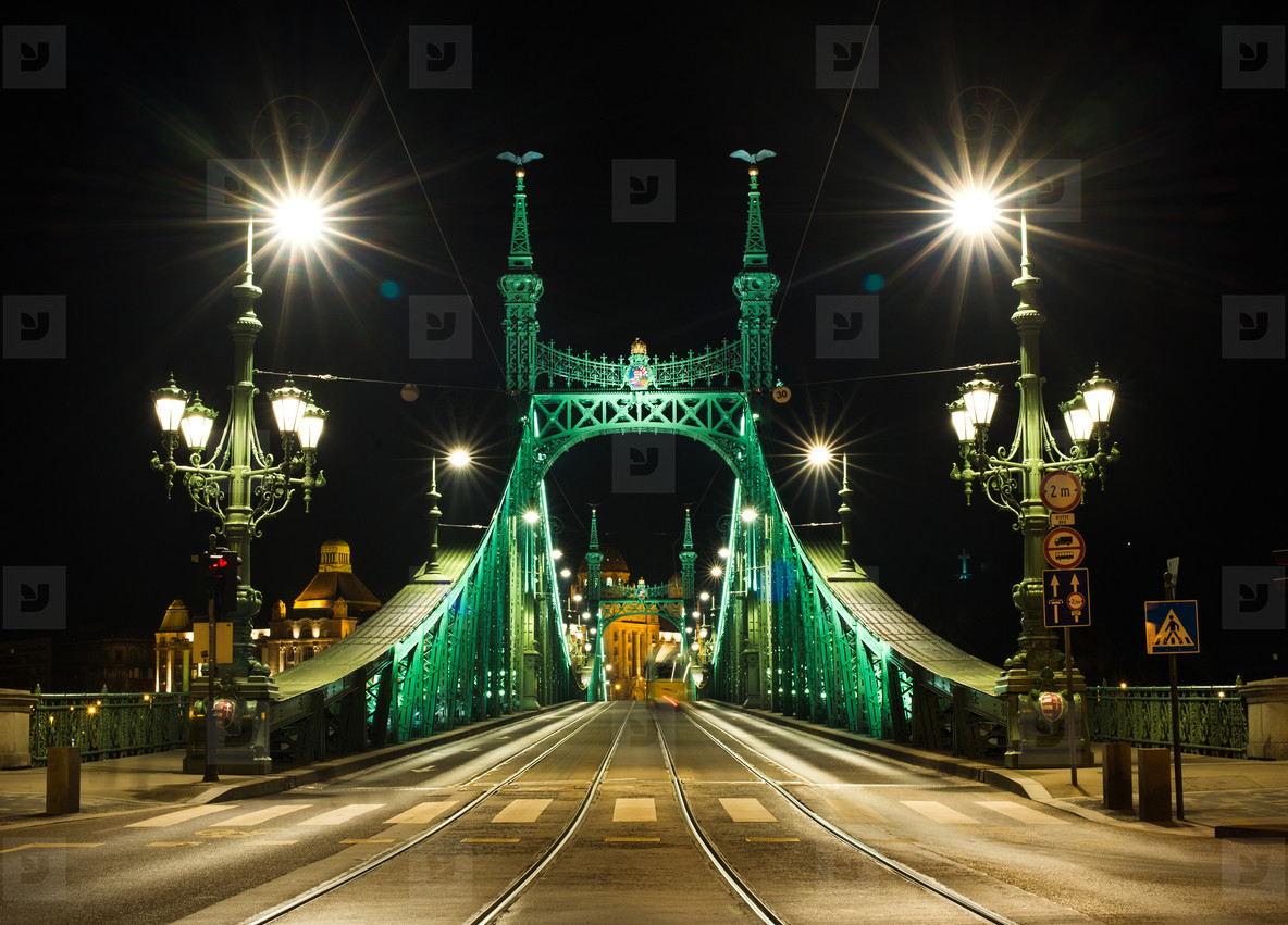 Night view of Liberty Bridge in Budapest  Hungary