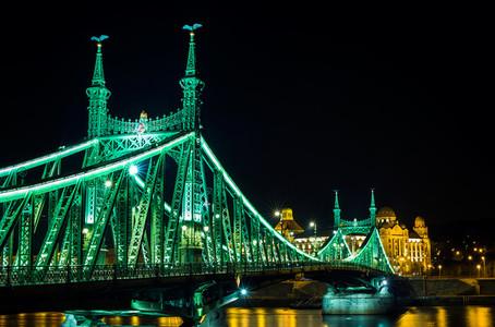 Liberty Bridge in Budapest at night  Hungary