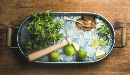 Ingredients for making mojito summer cocktail in metal tray