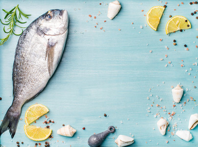 Fresh raw sea bream fish decorated with lemon slices  spices and shells on blue wooden background  copy space