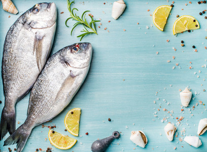 Fresh raw sea bream fish decorated with lemon slices  herbs and  shells on blue wooden background  copy space