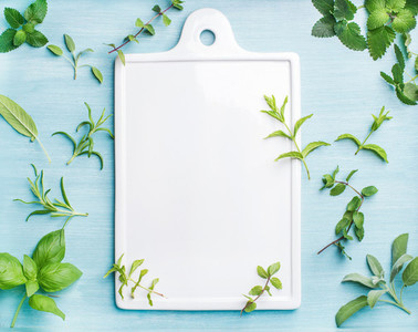 Sage basil rosemary melissa and mint on blue background with copy space