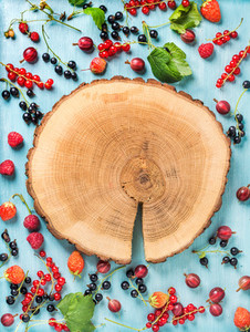 Healthy summer garden berry variety Black and red currant gooseberry rasberry strawberry mint leaves on blue painted backdrop with round wooden board in center copy space