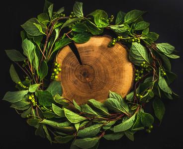 Background with Schisandra chinensis wreath around wooden board on dark  copy space