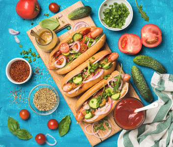 Homemade hot dogs with fresh vegetables  spices  ketchup and mustard