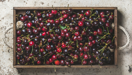 Sweet cherries in rustic wooden tray over light concrete background