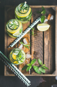 Citrus and herbs infused sassi water in tray  copy space