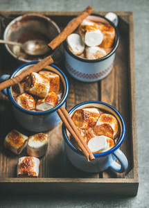 Hot chocolate with cinnamon and roasted marshmallows in wooden tray