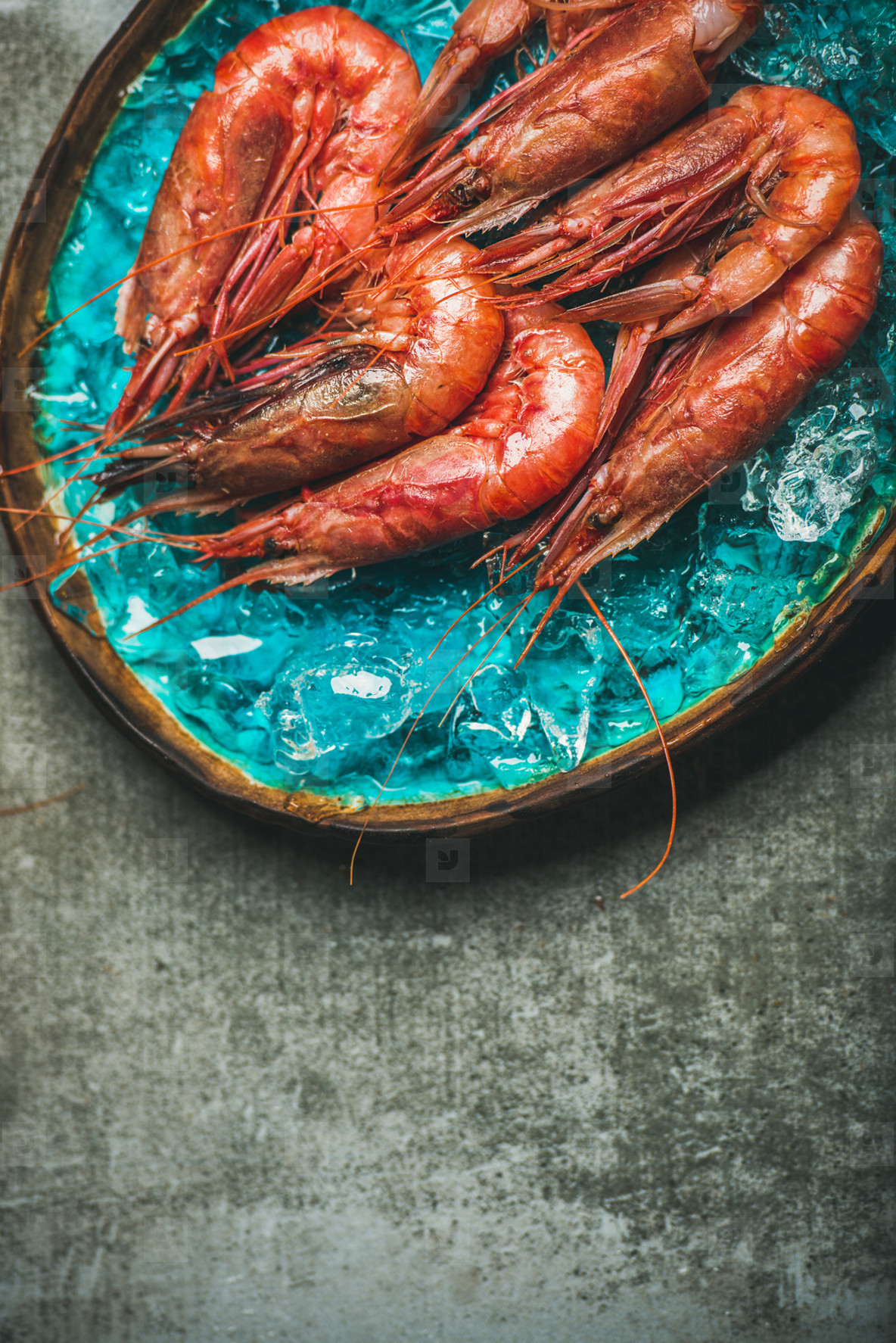 Raw uncooked red shrimps on ice  grey concrete background