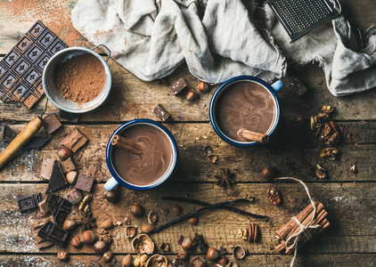 Hot chocolate with cinnamon sticks  anise  nuts and cocoa powder