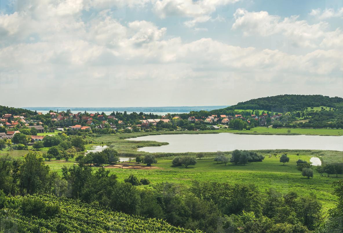 View over wineyards and Tihany village  Lake Balaton  Hungary