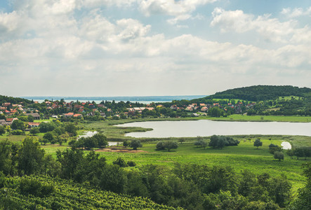 View over wineyards and Tihany village Lake Balaton Hungary