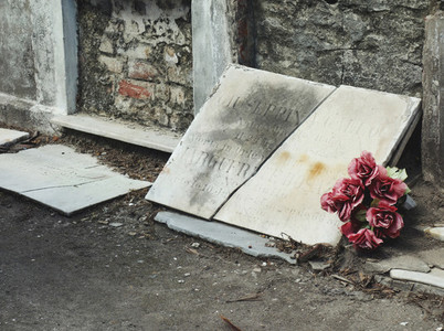 Roses in front of a gravestone