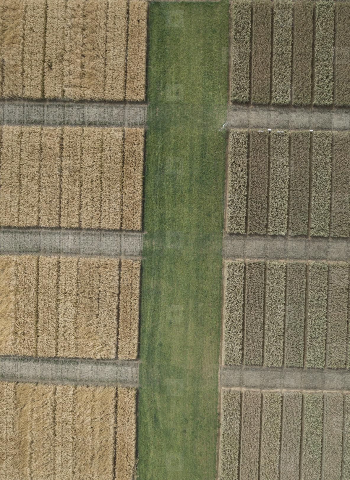 Aerial Outlook  07