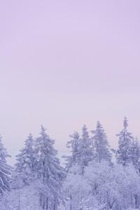 Snowed Under 01