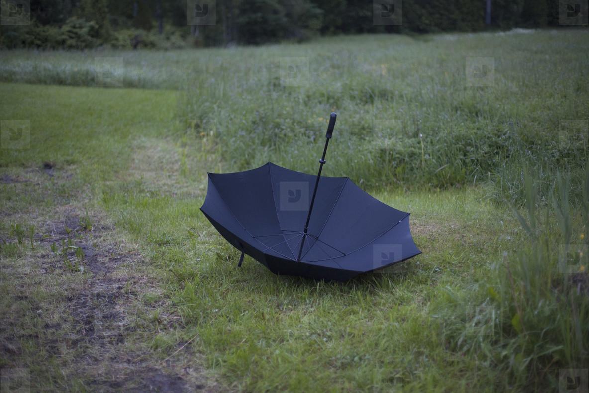 Under My Umbrella  06