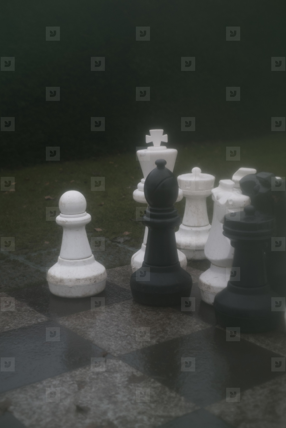 Checkerboard  01
