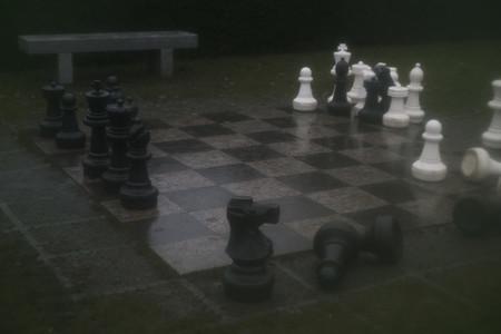 Checkerboard 20