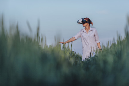 Reality Fields 03