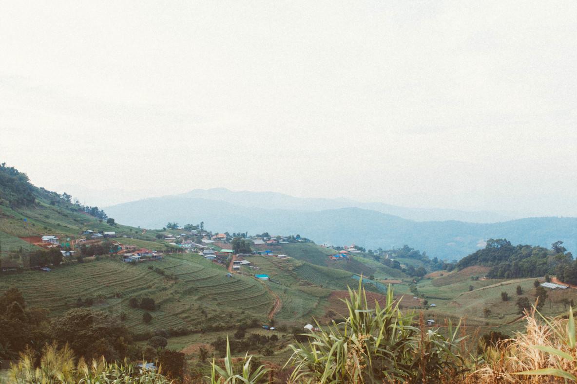 Terrace fields mountain view