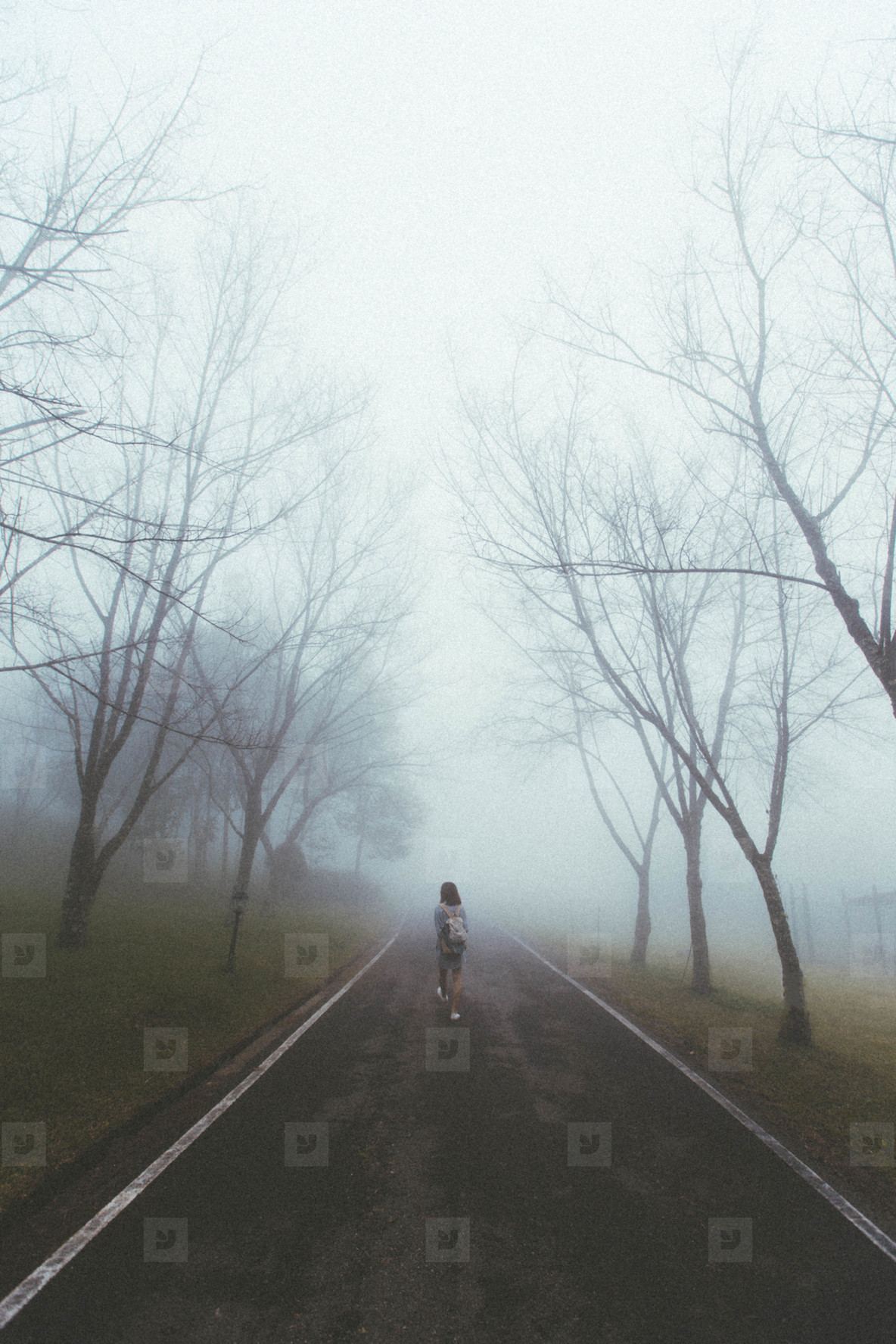 Walk into foggy forest road