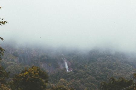 Waterfall in misty forest