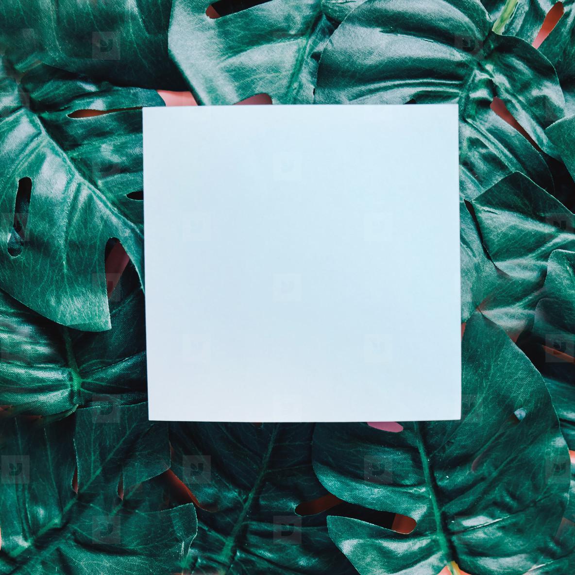 Blank paper ob green leaves