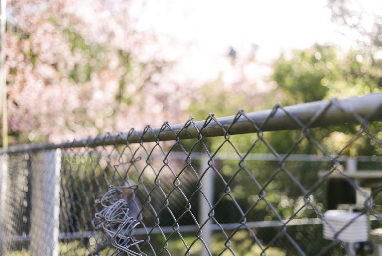 Wire fence in the park