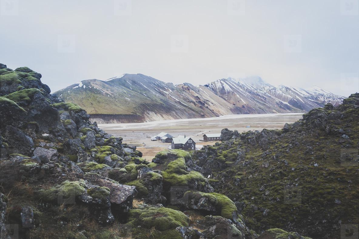 Icelandic Highland  02
