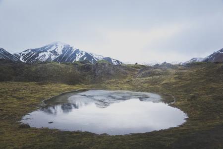 Icelandic Highland 03