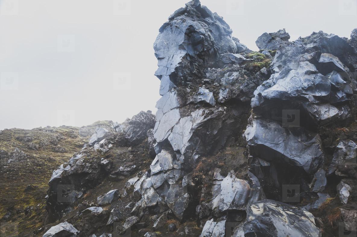Icelandic Highland  05