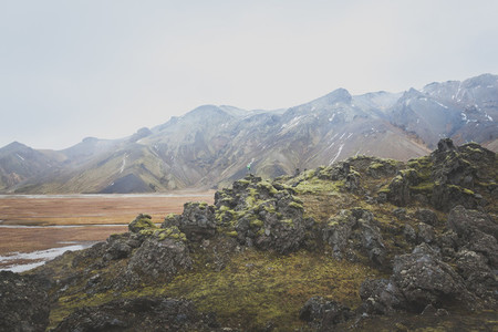 Icelandic Highland 06