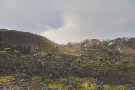 Icelandic Highland 09