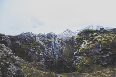 Icelandic Highland 10