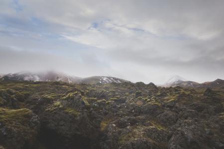 Icelandic Highland 11