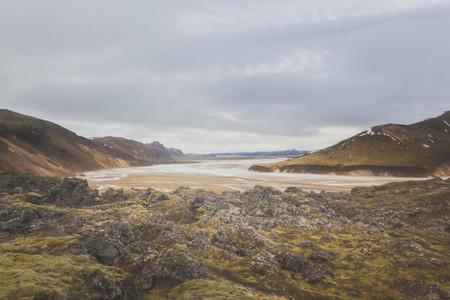 Icelandic Highland 12