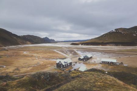 Icelandic Highland 13