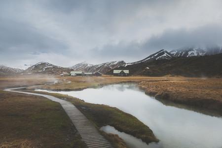 Icelandic Highland 16