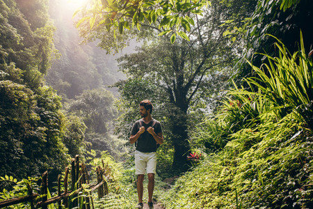 Man hiking in lush rainforest