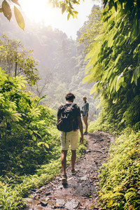 Couple walking along a path through the forest