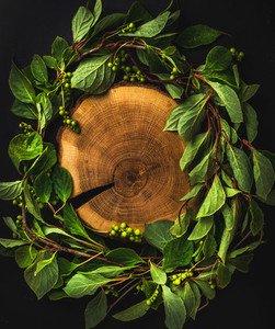 Background with Schisandra chinensis wreath around wooden board on dark copy space