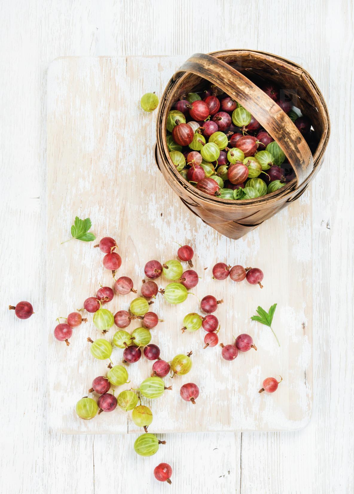 Variety of ripe garden gooseberries in birchbark basket