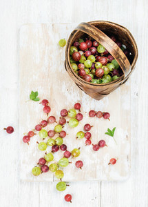 Variety of ripe garden gooseberries in birchbark basket