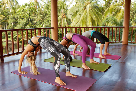 Young women in flexible wheel pose at yoga class