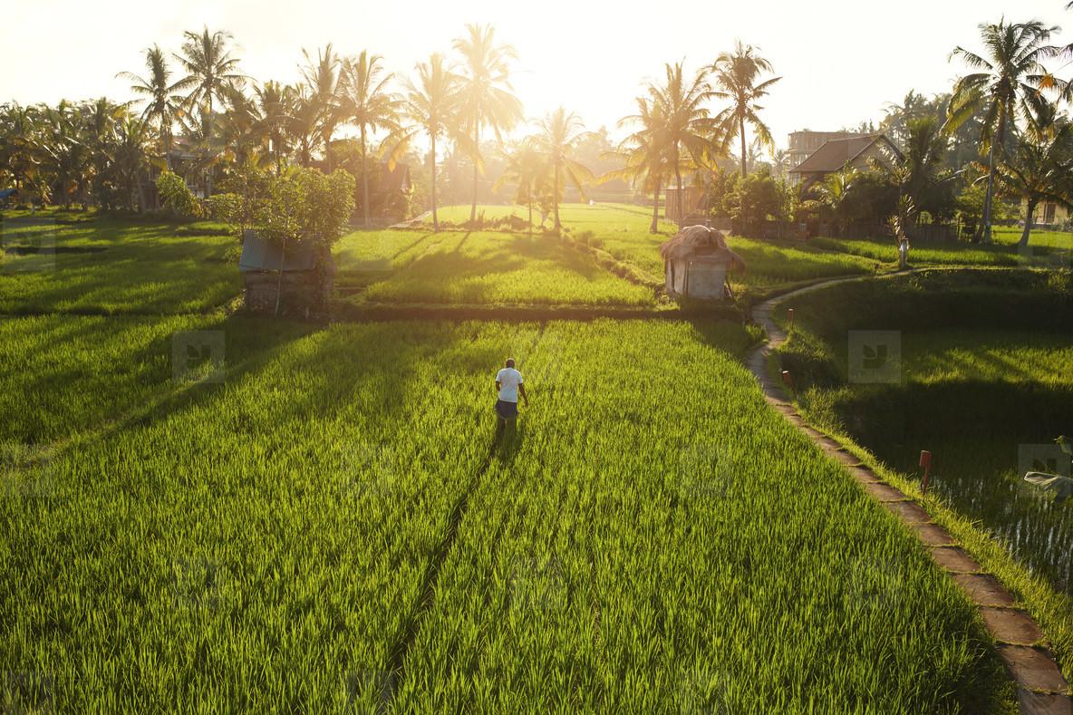 Beautiful view of farm lands