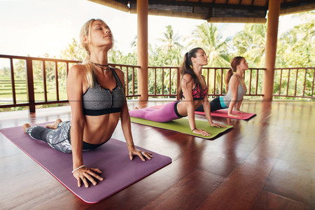 Fitness group doing cobra pose in row at yoga class