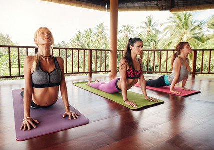 Women doing cobra pose on fitness mat at health club