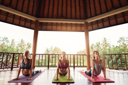 Three women doing the cobra pose yoga at class