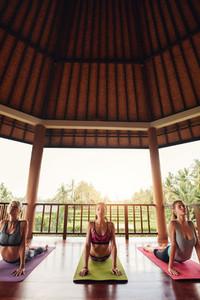 Three beautiful young women doing yoga