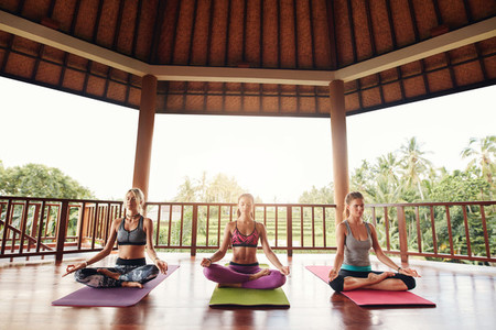 Group of female meditating in lotus pose in yoga class